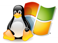 Windows and Linux Icon